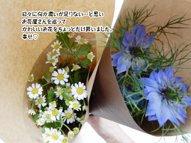 お花を買って潤いチャージ
