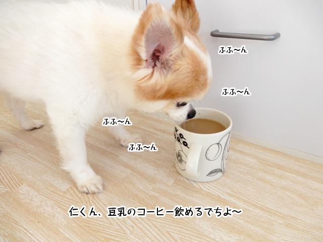 コーヒーを飲もうとする仁くん