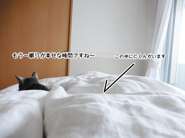 ベッドでそれぞれに寝ているのを激写