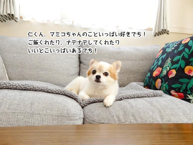 マミコちゃんのこと好きでち。いいとこいっぱいあるでち!