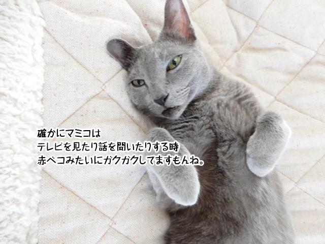 確かにマミコはカクカクしてますよね