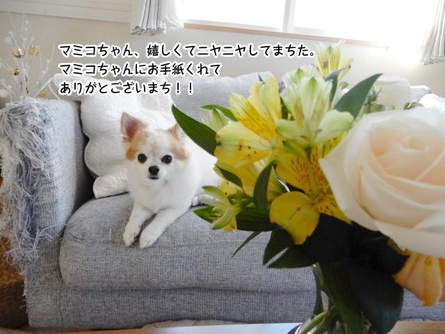 マミコちゃん、ご感想をもらえて大喜びしてまち