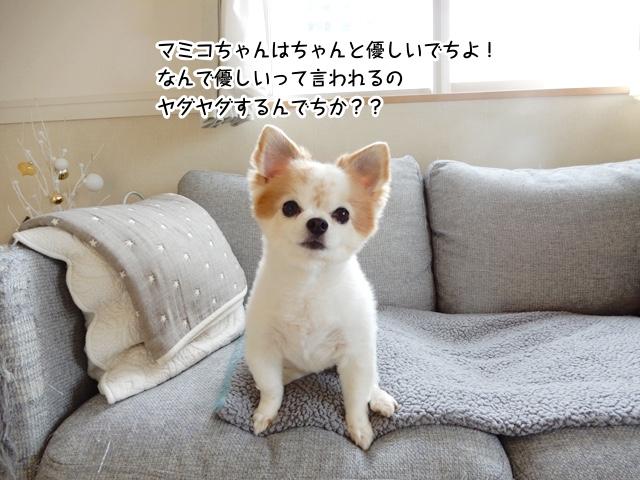 マミコちゃんは優しいでちよ