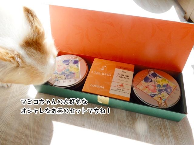 マミコちゃんの好きなお茶のセットでち