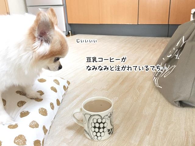 豆乳コーヒーがなみなみでち…