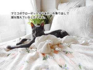 マミコがクローゼットを開けて悩んでいましたですよ