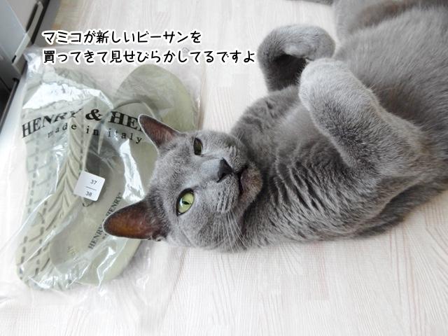 マミコが新しいビーサンを買ってきて見せびらかしてるですよ