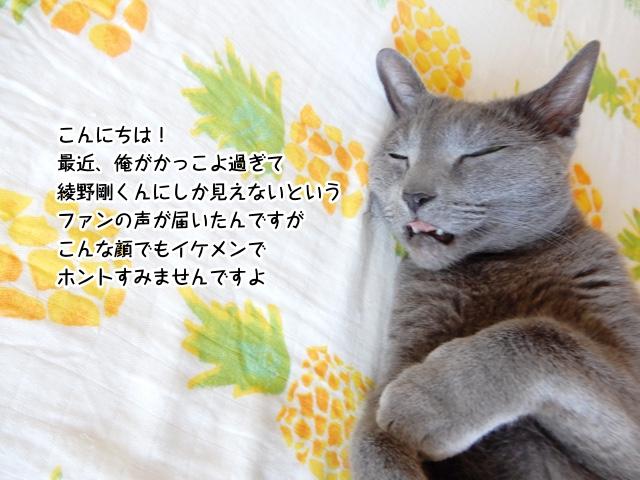 こんにちは! 最近、俺がかっこよ過ぎて綾野剛くんにしか見えないというファンの声が届いたんですがこんな顔でもイケメンでホントすみませんですよ