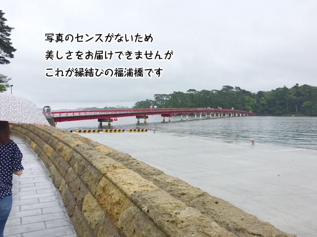 写真のセンスがないため美しさをお届けできませんが、これが縁結びの福浦橋です