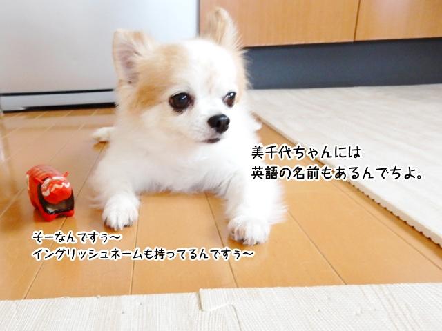 美千代ちゃんは英語のお名前ももってるんでちよ