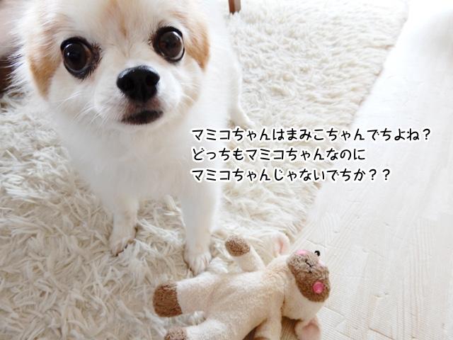 マミコちゃんはまみこちゃんでちよね?どっちもマミコちゃんなのにマミコちゃんじゃないでちか?