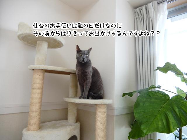 仙台のお手伝いは海の日だけなのに、その前からはりきってお出かけするんですよね??