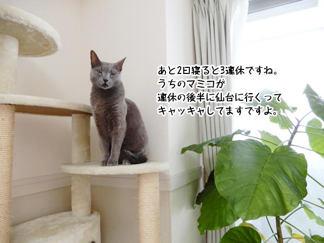 あと2日寝ると3連休ですね。 うちのマミコが 連休の後半に仙台に行くって キャッキャしてますですよ。