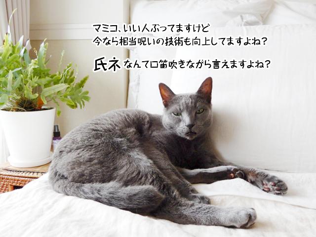 マミコ、いい人ぶってますけど今なら相当呪いの技術も向上してますよね?氏ネなんて口笛吹きながら言えますよね?