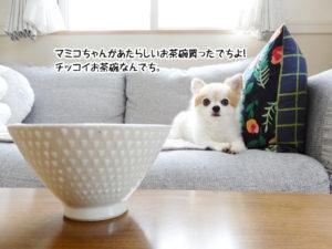 マミコちゃんがあたらしいお茶碗買ったでちよ! チッコイお茶碗なんでち。