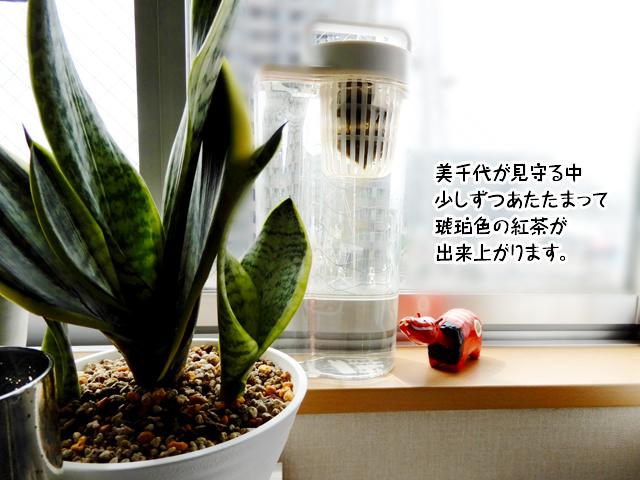美千代が見守る中少しずつあたたまって琥珀色の紅茶が出来上がります。