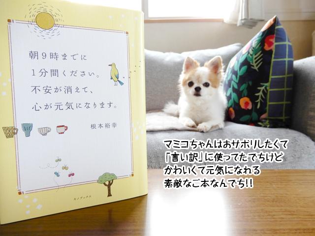 マミコちゃんはおサボリしたくて「言い訳」に使ってたでちけどかわいくて元気になれる素敵なご本なんでち!!