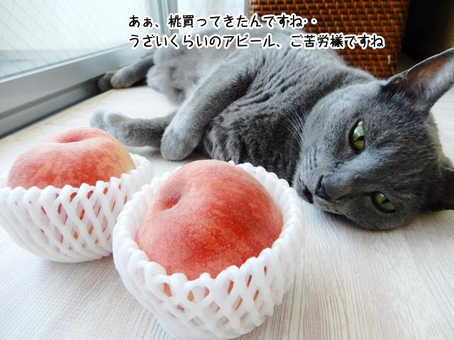 あぁ、桃買ってきたんですね…うざいくらいのアピール、ご苦労様ですね