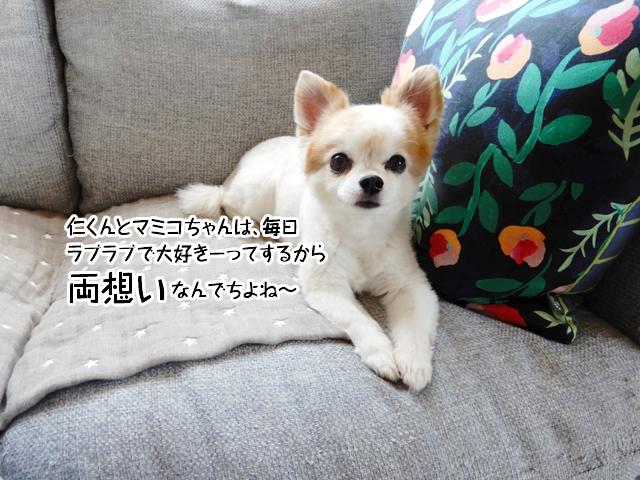 仁くんとマミコちゃんは、毎日ラブラブで大好きーってするから両想いなんでちよねー