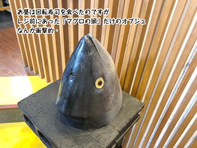 お昼は回転寿司を食べたのですがレジ前にあった「マグロの頭」だけのオブジェなんか衝撃的…
