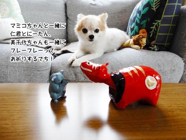 マミコちゃんと一緒に仁君とにーたん、美千代ちゃんも一緒にフレーフレーってお祈りするでち!