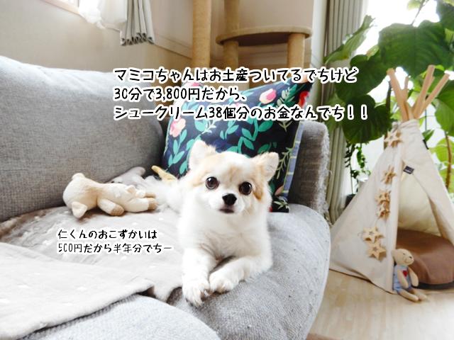 マミコちゃんはお土産ついてるでちけど30分で3,800円だから、シュークリーム38個分のお金なんでち!!
