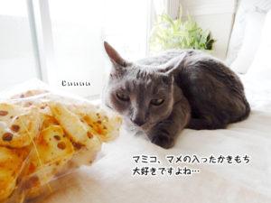 マミコ、マメの入ったかきもち 大好きですよね…