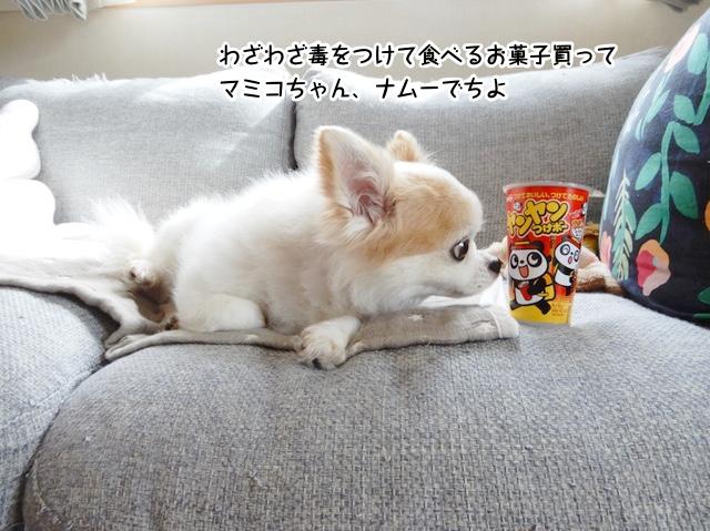 わざわざ毒をつけて食べるお菓子買って マミコちゃん、ナムーでちよ