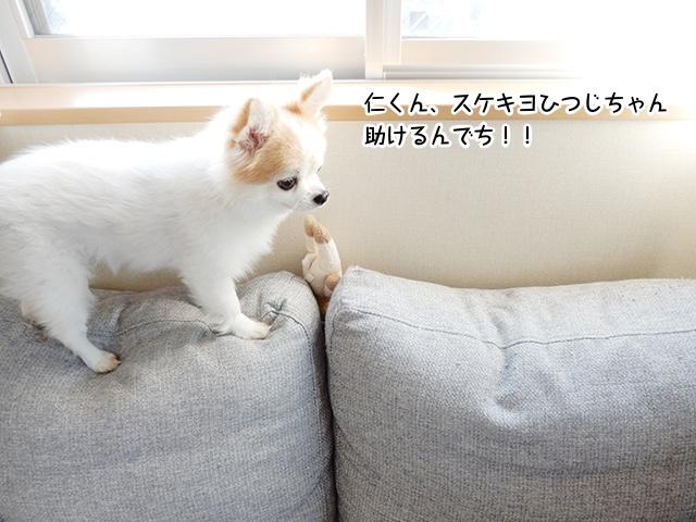 仁くん、スケキヨひつじちゃん助けるんでち!!