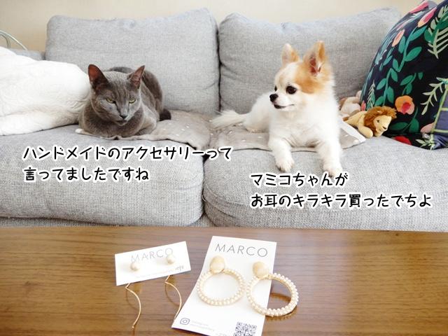 マミコちゃんがお耳のキラキラ買ったでちよ。ハンドメイドのアクセサリーって 言ってましたですね