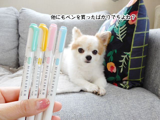 他にもペンを買ったばかりでちよね?