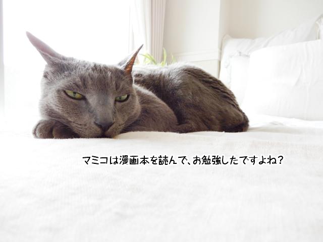 マミコは漫画本を読んで、お勉強したですよね?