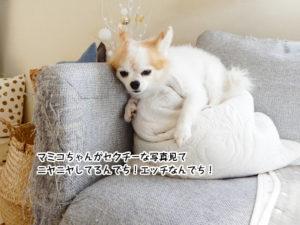 マミコちゃんがセクチーな写真見て ニヤニヤしてるんでち!エッチなんでち!