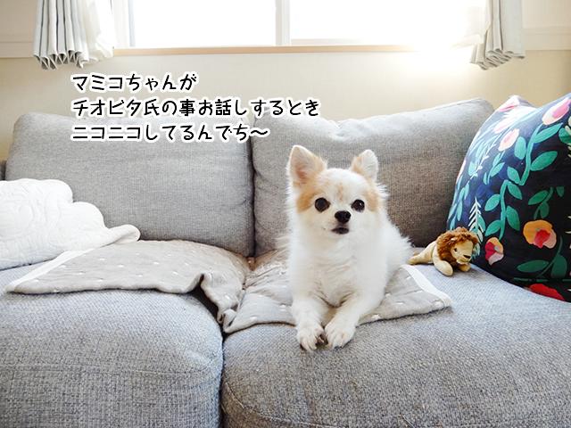 マミコちゃんがチオビタ氏の事お話しするときニコニコしてるんでち~