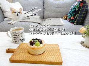 マミコちゃんが 今日も自分にご褒美するって ブドウのパンをっ買ってきたんでち!