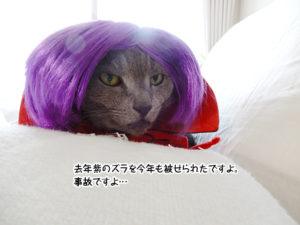 去年紫のズラを今年も被せられたですよ。事故ですよ…