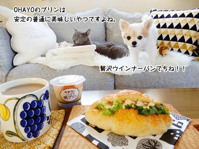 OHAYOのプリンは安定の普通に美味しいやつですよね。贅沢ウインナーパンでちね!!