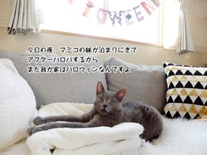 今日の夜マミコの妹が泊まりにきてアフターハロパするからまだ我が家はハロウィンなんですよ