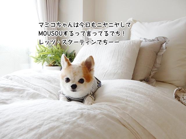 マミコちゃんは今日もニヤニヤしてMOUSOUするって言ってるでち!レッツ・スターティン!!