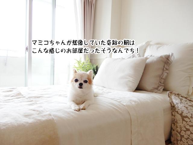 マミコちゃんが想像していた奇跡の朝はこんな感じのお部屋だったそうなんでち!