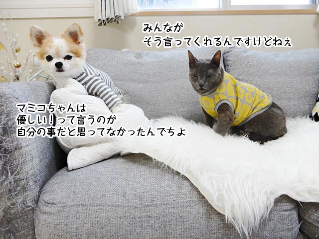 マミコちゃんは 優しい!って言うのが 自分の事だと思ってなかったんでちよ!みんなが そう言ってくれるんですけどねぇ