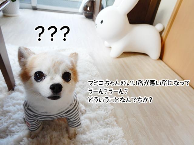 マミコちゃんのいい所が悪い所になってうーん?うーん?どういうことなんでちか?