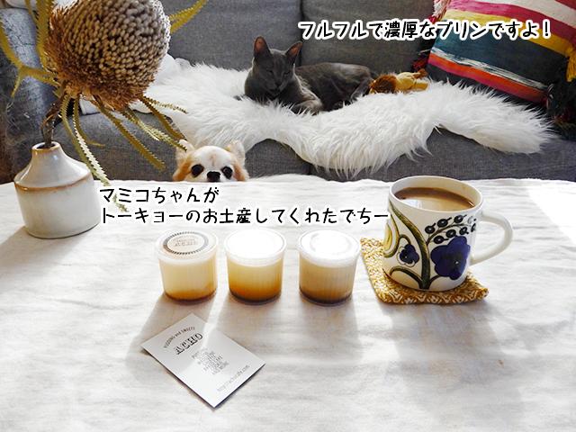 マミコちゃんがトーキョーのお土産にふるふるのプリン買ってきたんでちー