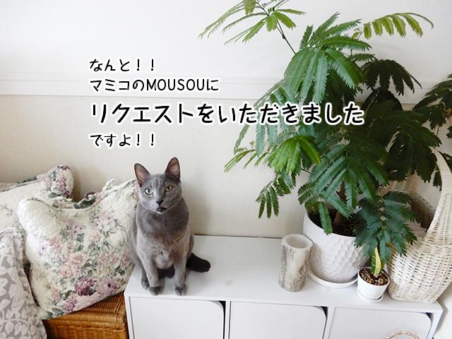 なんと!!マミコのMOUSOUにリクエストをいただきましたですよ!!