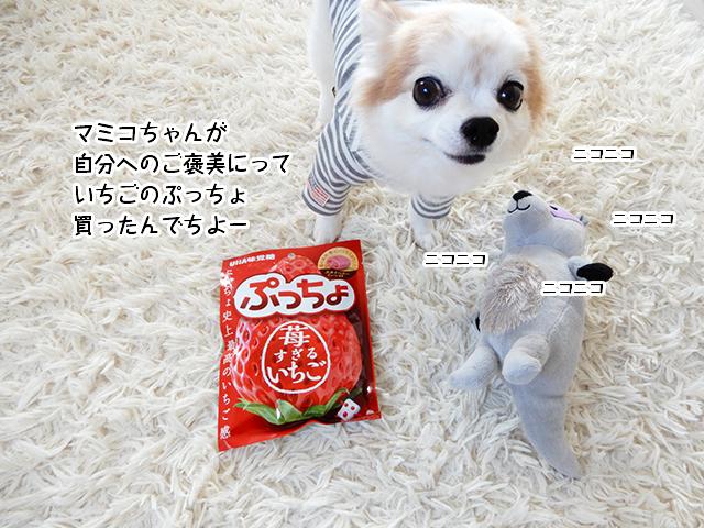 マミコちゃん 自分へのご褒美にっていちごのぷっちょ買ったんでちよー