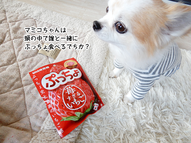 マミコちゃんは頭の中で誰と一緒にぷっちょ食べるでちか?