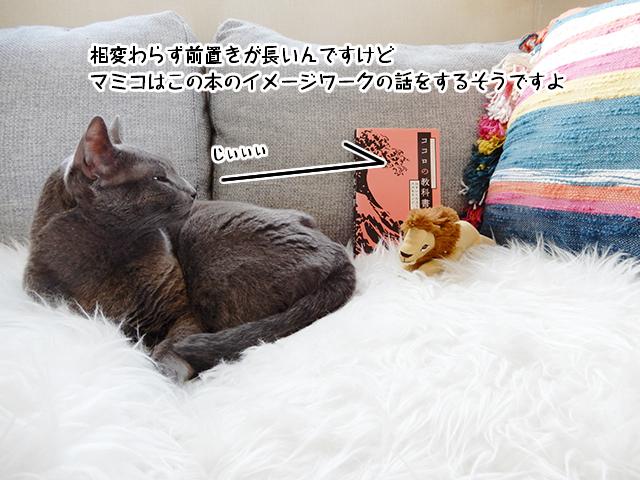 相変わらず前置きが長いんですけどマミコはこの本のイメージワークの話をするそうですよ