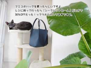 マミコがバッグを買ったらしいですよ。レジに持って行ったら「シークレットセール」だとかで30%OFFだった!ってウホウホしてますですよ。