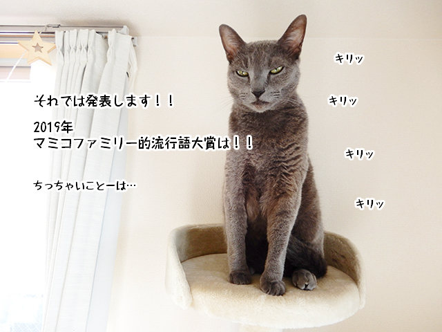 それでは発表します!!2019年マミコファミリー的流行語大賞は!!