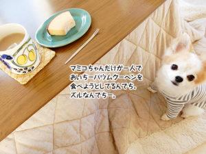 マミコちゃんが一人でおいちーバウムクーヘンを食べようとしてるんでち。ズルなんでちー。
